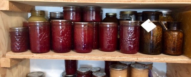 Preparing Yummy Plum Preserve